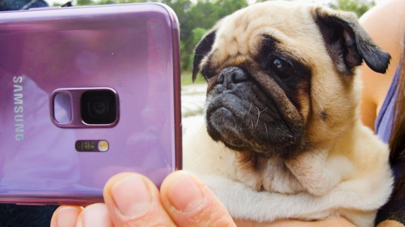 БазФид  и  Додо  го прават секојдневието поинтересно преку Супер Бавни  Слоу Мо  видеа креирани со новите Самсунг Галакси С9 и С9