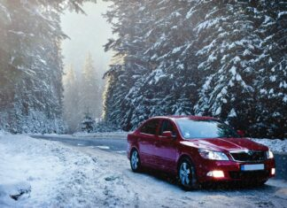 red sedan in the middle of forest